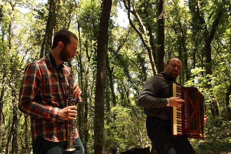 Passeggiata-Poetica-3-concerto-foresta.jpg