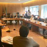 Commissione congiunta VIII e IX 31 Gennaio 2019 x (1)