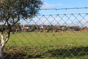 Aprilia, discarica di Via Savuto, località La Cogna