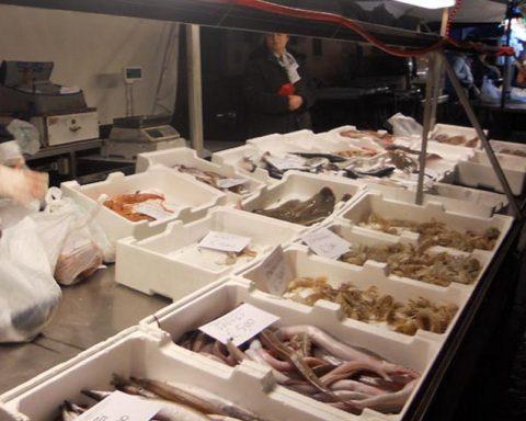 mercato-del-pesce gaeta