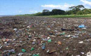 Plastica nei terreni