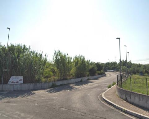 Via dell'edera