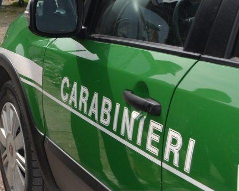 carabinieri-forestale