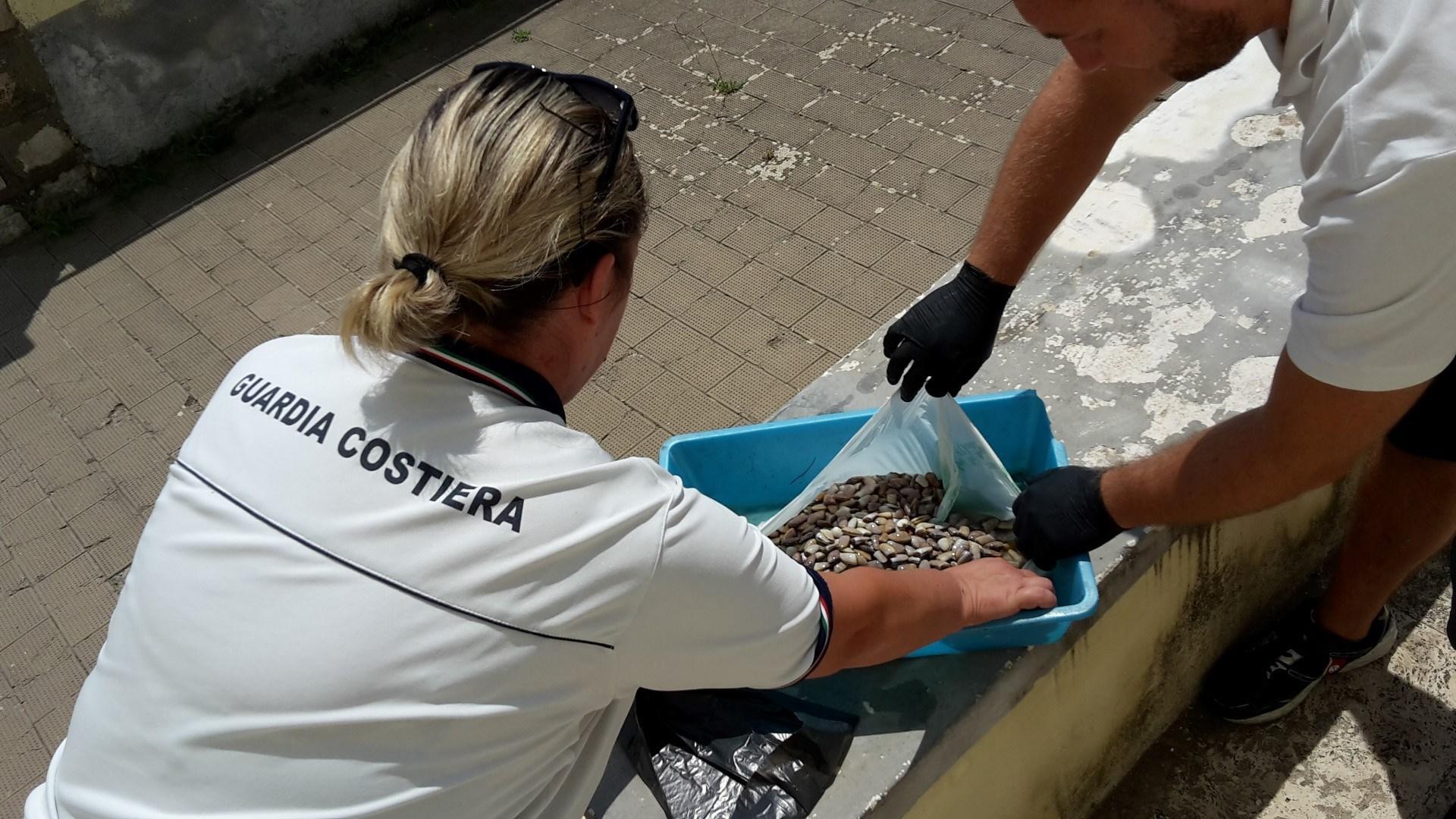 Sequestro prodotti ittici formia