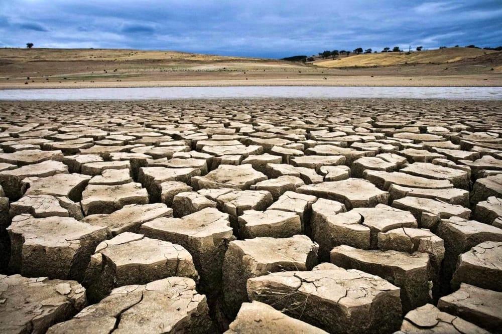 desertificazione nell'Agro pontino, azioni da compiere subito