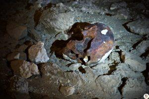grotta_guattari