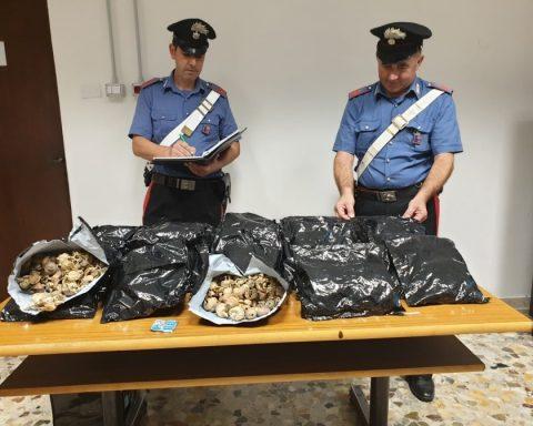 L'oppio sequestrato dai Carabinieri di Sabaudia