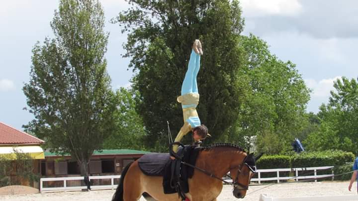 equitazione acrobatica latina