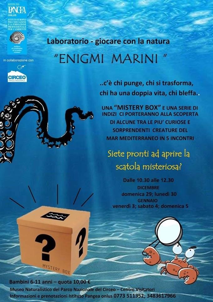 Enigmi marini