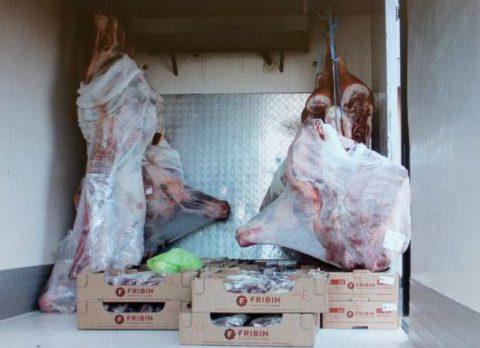 carne estera sequestrata ad aprilia