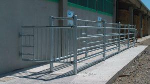 Un esempio di recinzioni corral