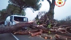 Un'immagine del maltempo che colpì Terracina nel 2018