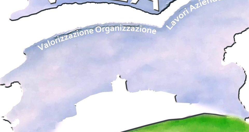 Il logo dell'Azienda speciale Vola