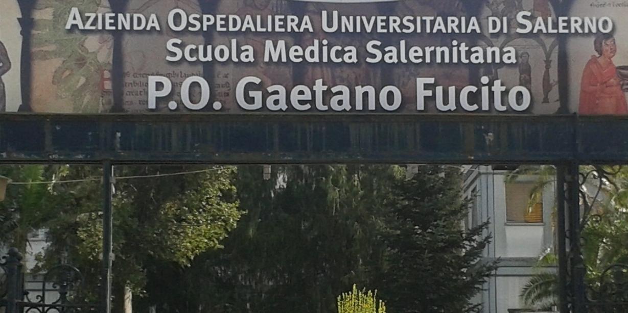 Ospedale Gaetano Fucito