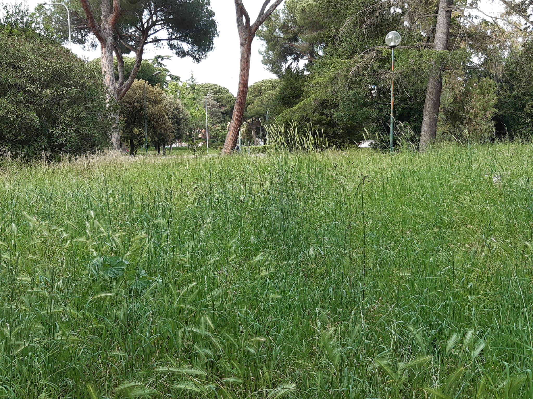 Parco Falcone e Borsellino di Latina