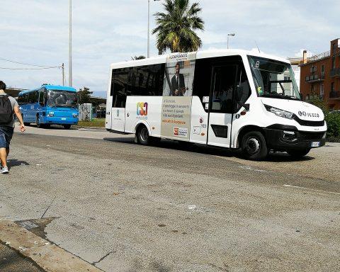 La Regione Lazio ha emanato un'ordinanza per le nuove regole relative al servizio di Trasporto Pubblico Locale, di linea e non di linea (Taxi, Ncc).
