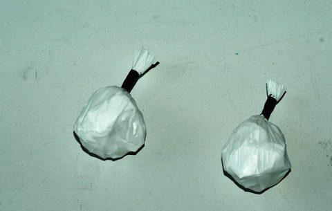 involucri cocaina