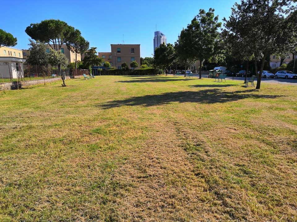 Area verde nel Quartiere Nicolosi (foto da Pagina Facebook del Comitato di Quartiere)