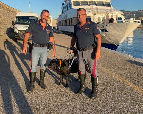 Gli agenti della Polizia Stradale insieme al cane appena salvato