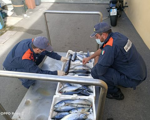 sequestro tonni