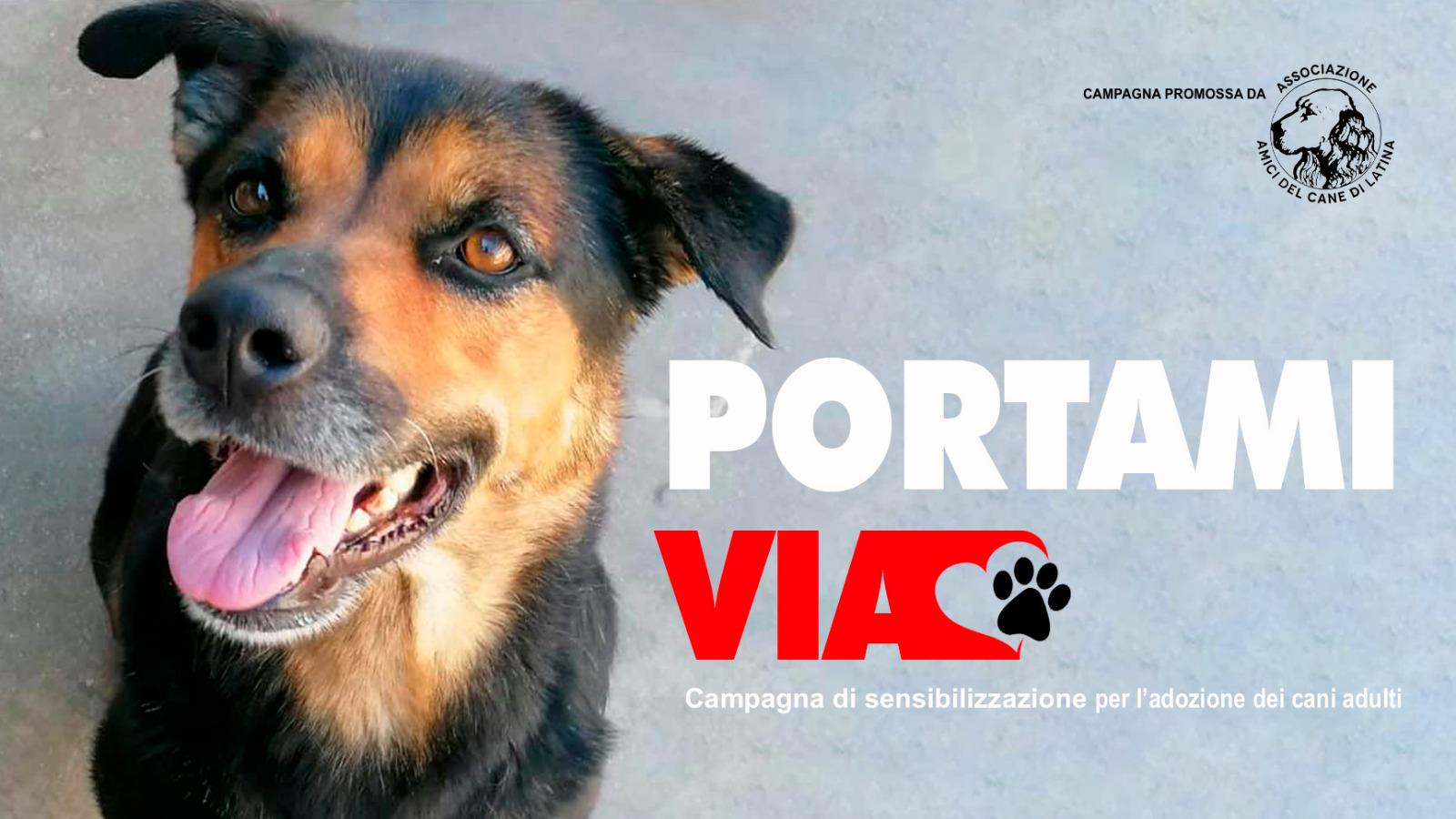 Amici del cane di Latina - campagna Portami via