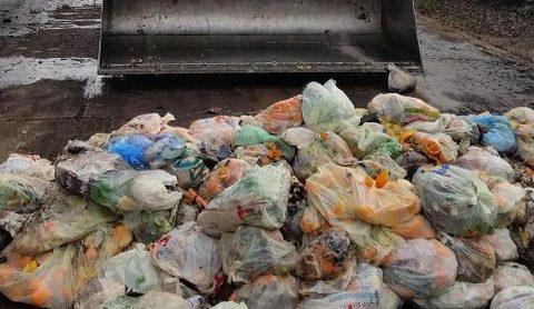 Biometano da rifiuti organici