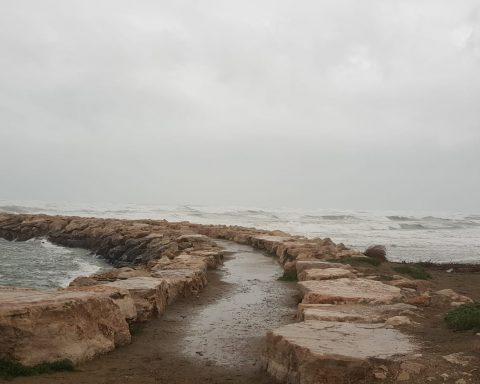 RIO MARTINO