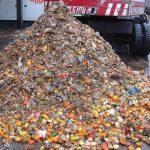 forsu-biogas